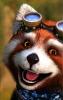 Аватар Panda0751